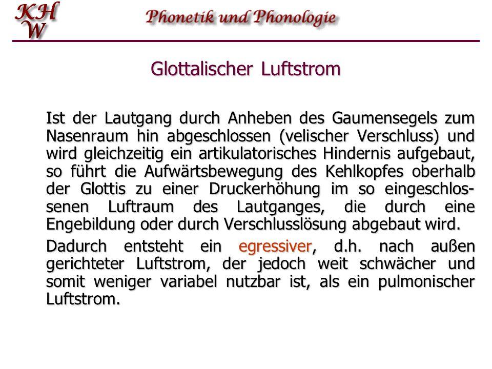 Glottalischer Luftstrom