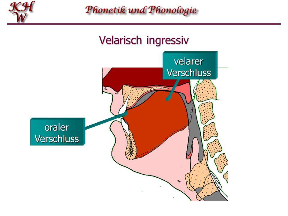 Velarisch ingressiv velarer Verschluss oraler Verschluss