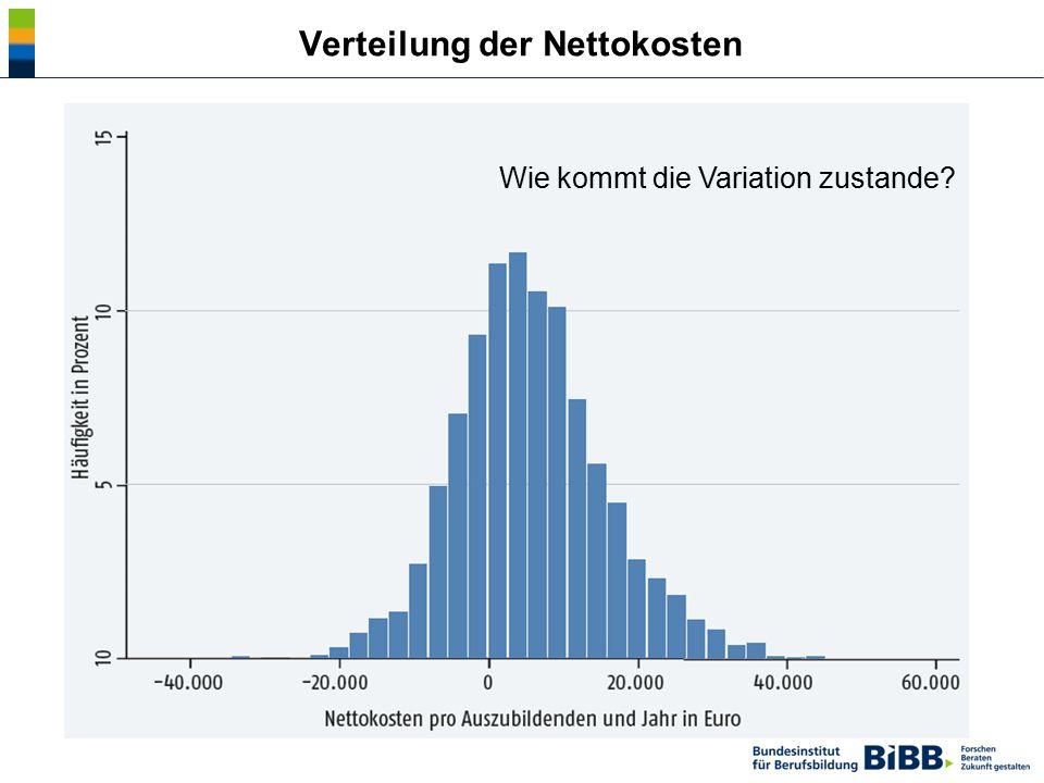 Verteilung der Nettokosten