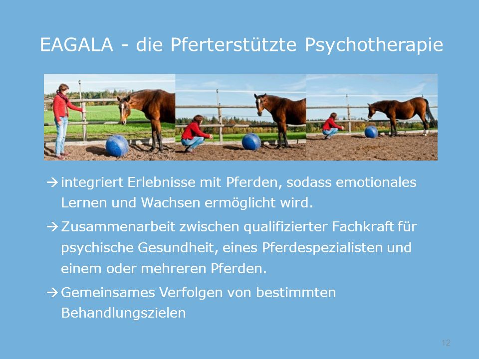 EAGALA - die Pferterstützte Psychotherapie