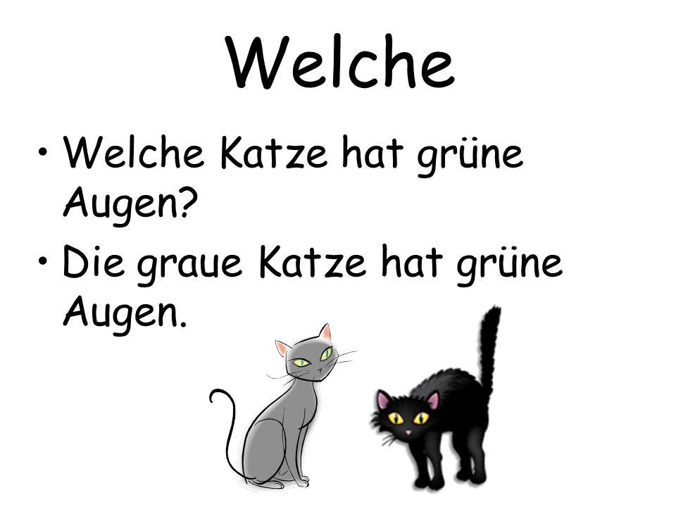 Welche Welche Katze hat grüne Augen Die graue Katze hat grüne Augen.