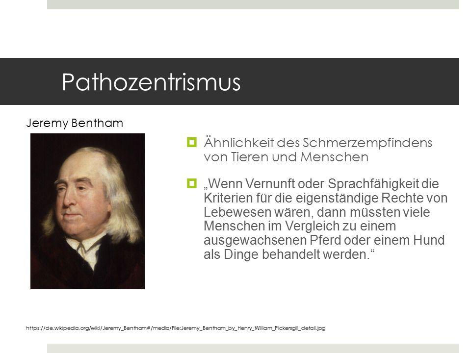 Pathozentrismus Jeremy Bentham. Ähnlichkeit des Schmerzempfindens von Tieren und Menschen.