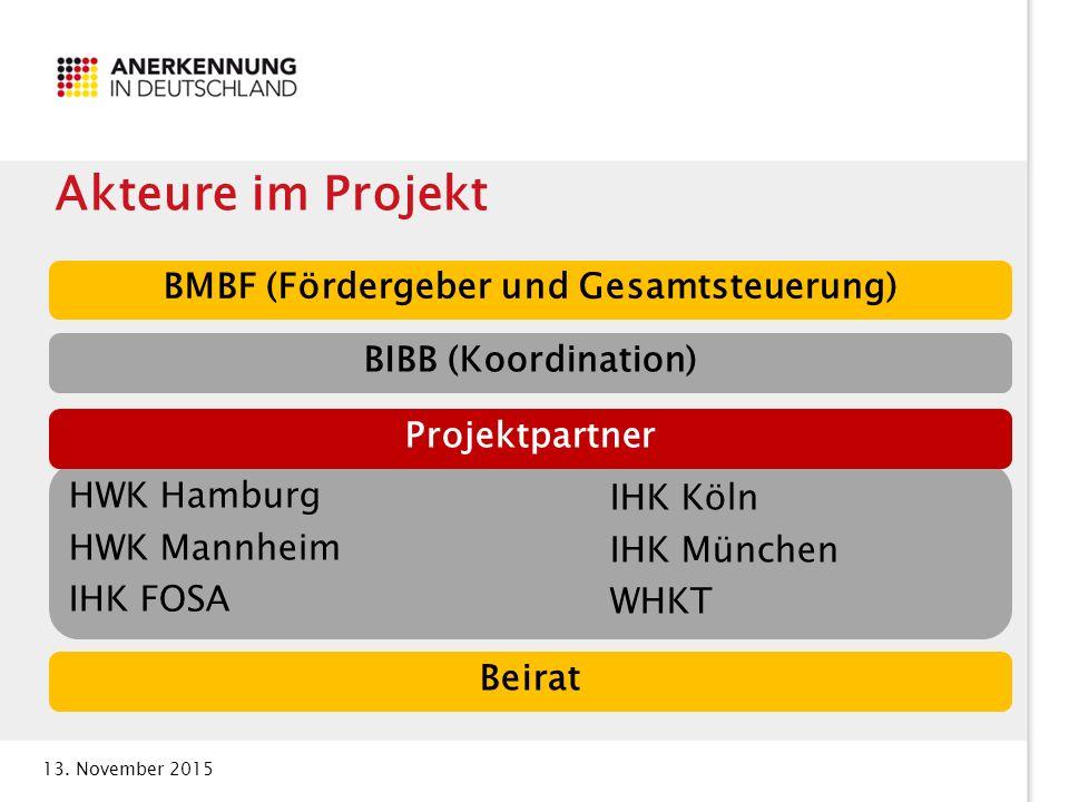 BMBF (Fördergeber und Gesamtsteuerung)