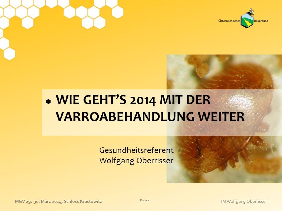 Gesundheitsreferent Wolfgang Oberrisser