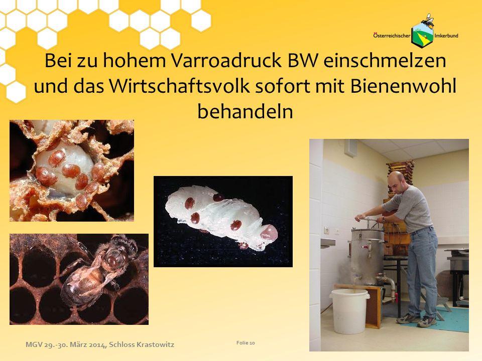 Bei zu hohem Varroadruck BW einschmelzen und das Wirtschaftsvolk sofort mit Bienenwohl behandeln