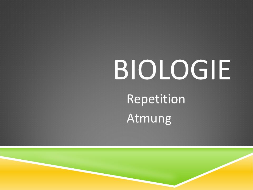 Biologie Repetition Atmung