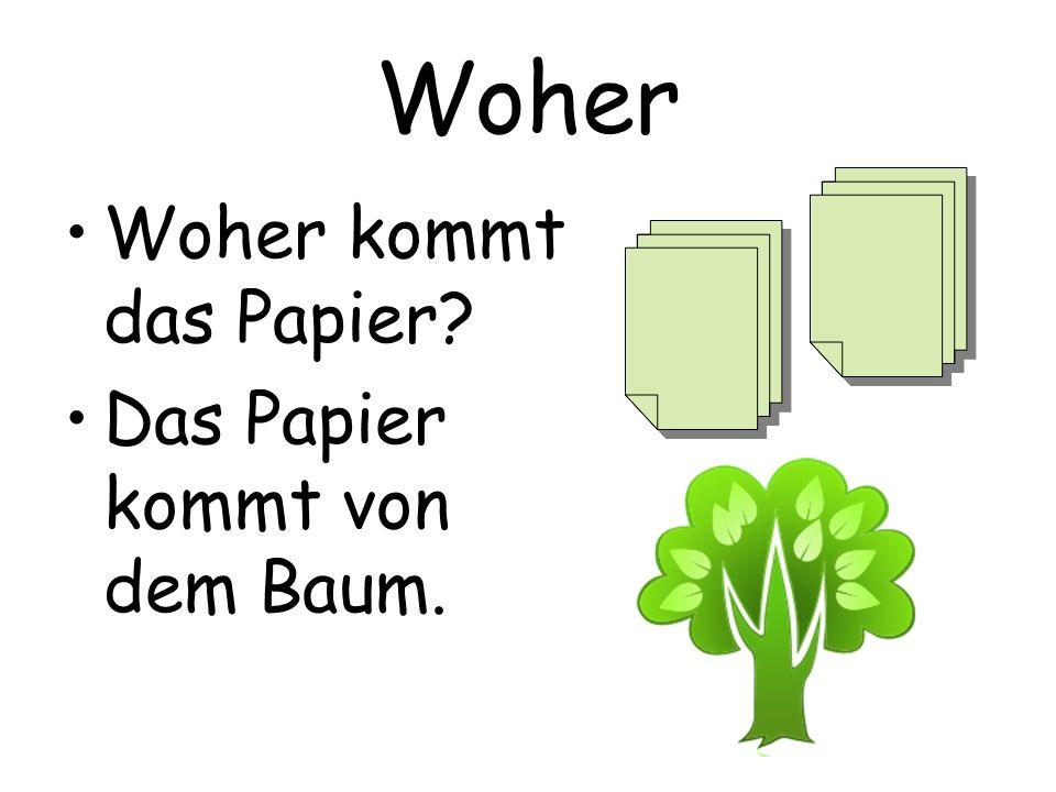 Woher Woher kommt das Papier Das Papier kommt von dem Baum.