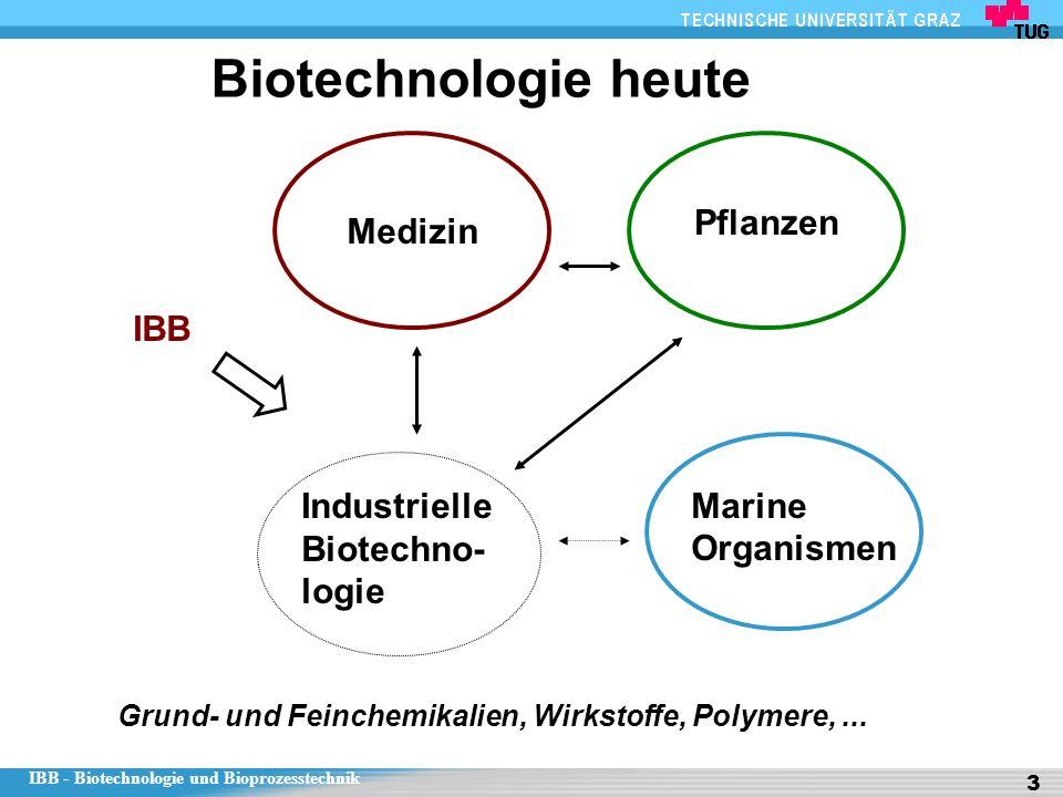 Biotechnologie heute Pflanzen Medizin IBB Industrielle Biotechno-