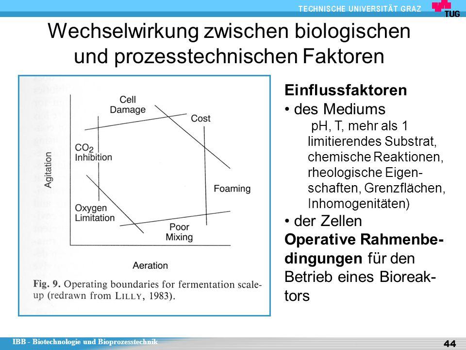 Wechselwirkung zwischen biologischen und prozesstechnischen Faktoren