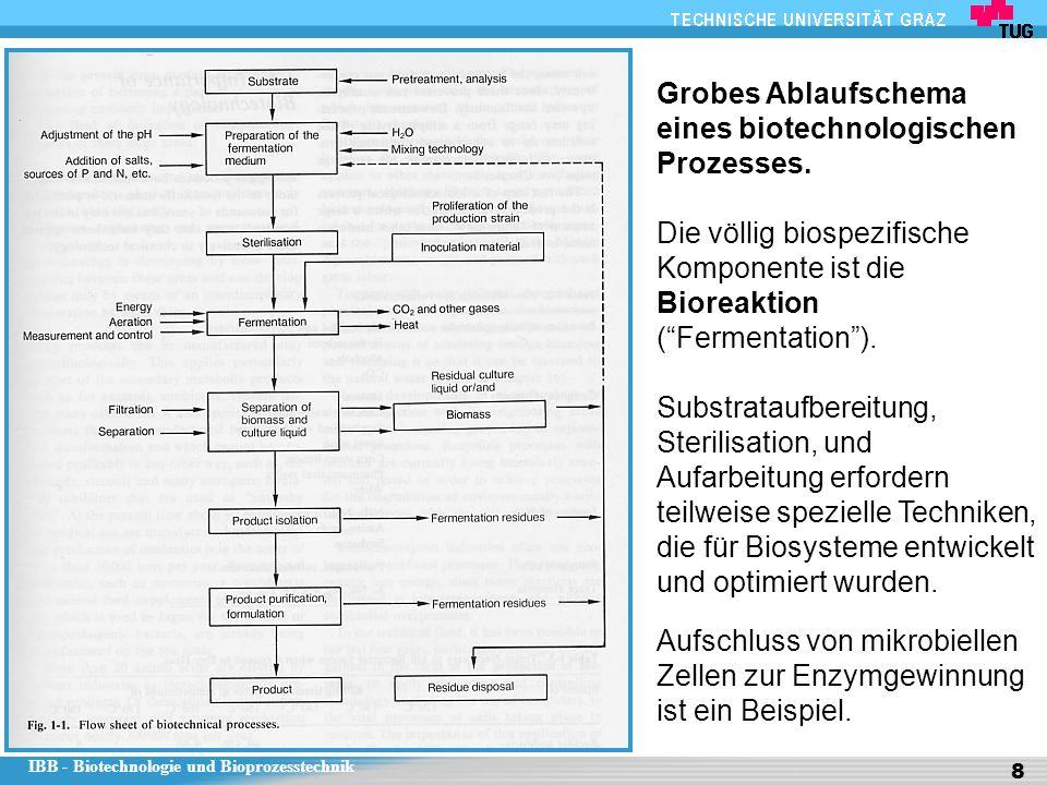 Grobes Ablaufschema eines biotechnologischen Prozesses.