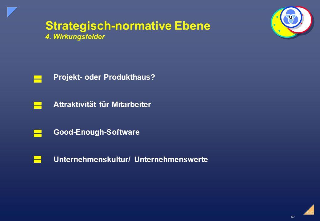 Strategisch-normative Ebene 4. Wirkungsfelder
