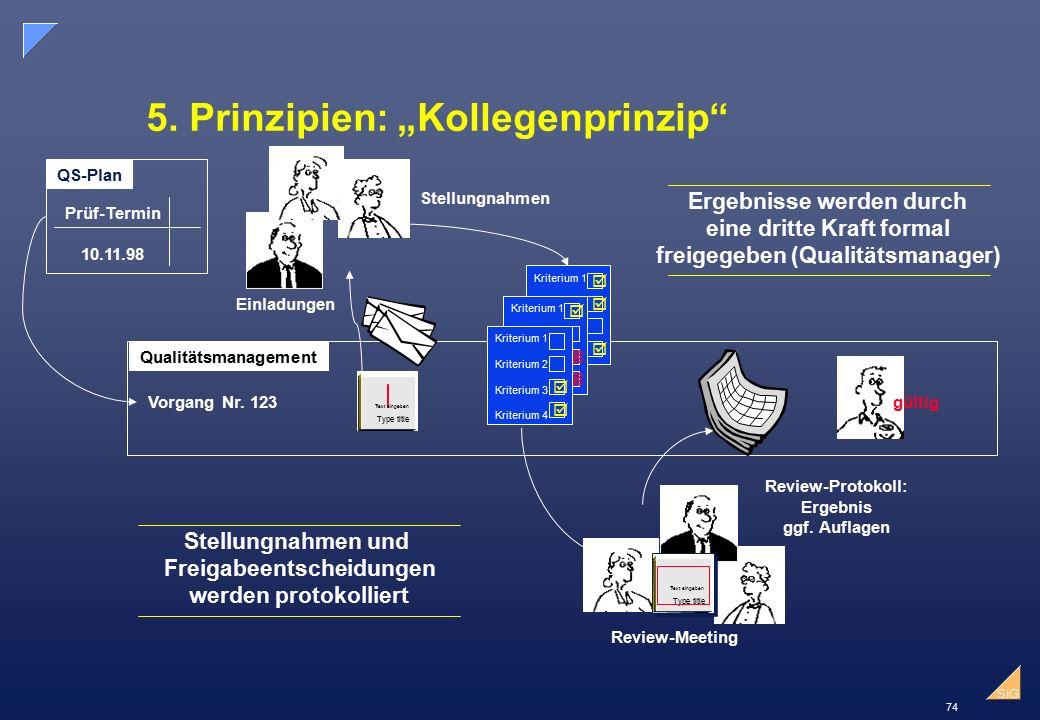"5. Prinzipien: ""Kollegenprinzip"