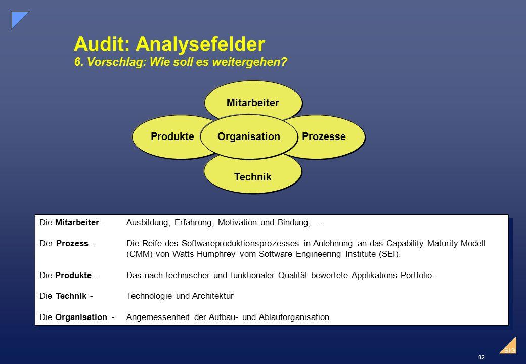 Audit: Analysefelder 6. Vorschlag: Wie soll es weitergehen