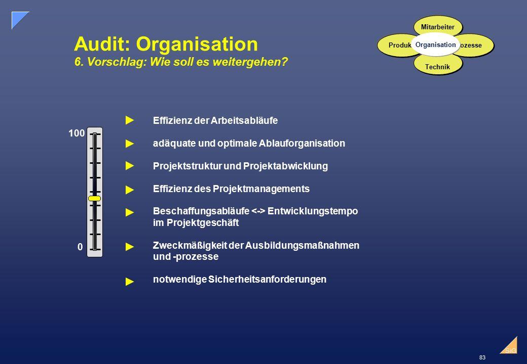Audit: Organisation 6. Vorschlag: Wie soll es weitergehen