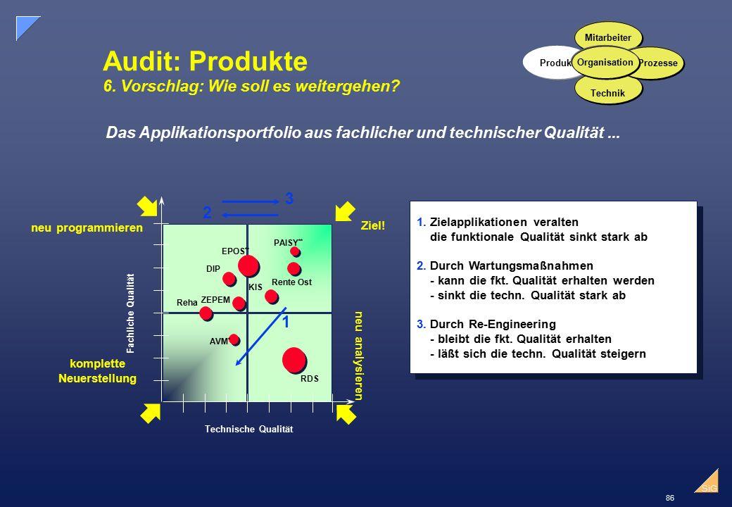 Audit: Produkte 6. Vorschlag: Wie soll es weitergehen