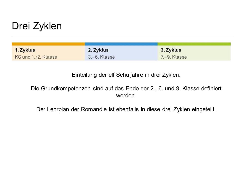 Einteilung der elf Schuljahre in drei Zyklen.