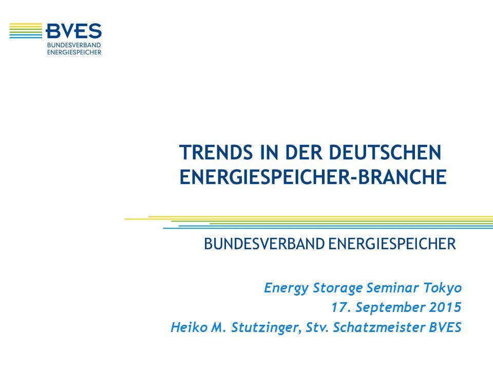 Trends in der deutschen Energiespeicher-Branche