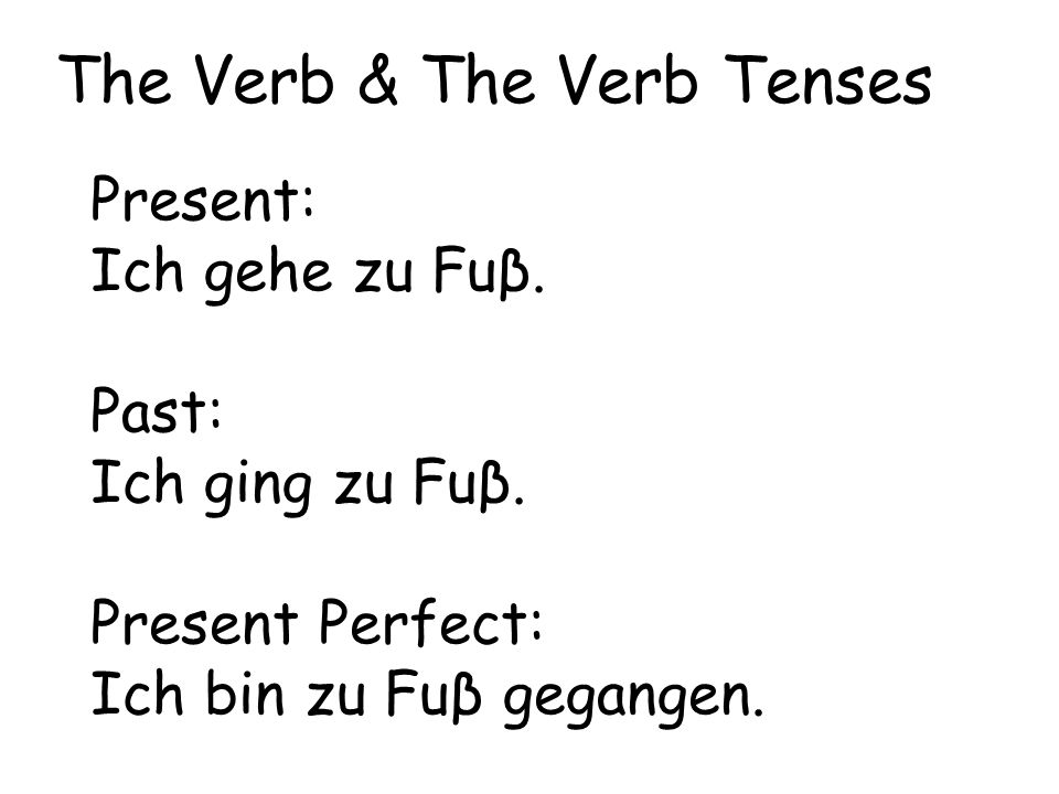 The Verb & The Verb Tenses