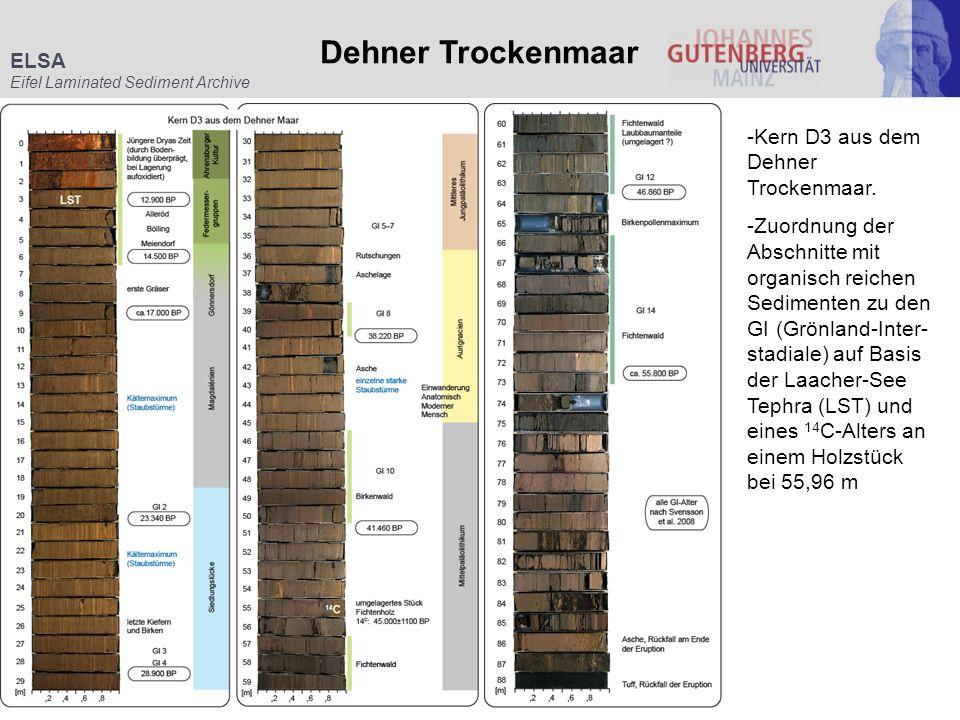 Dehner Trockenmaar ELSA -Kern D3 aus dem Dehner Trockenmaar.