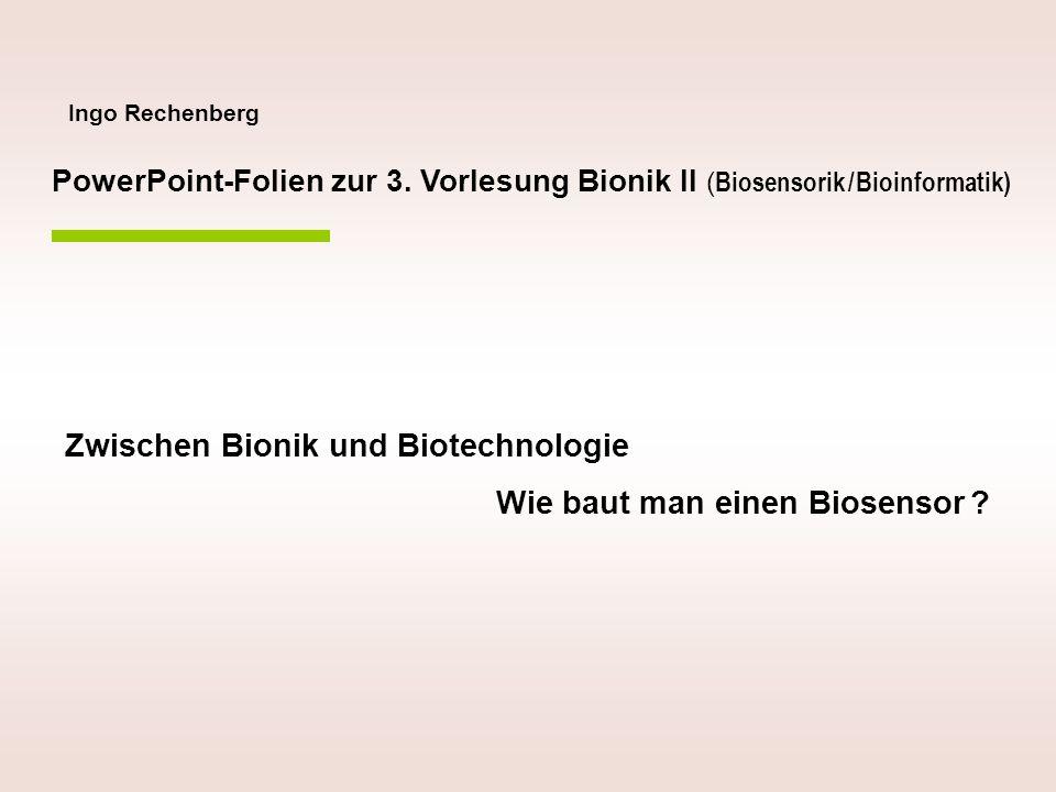 Zwischen Bionik und Biotechnologie Wie baut man einen Biosensor