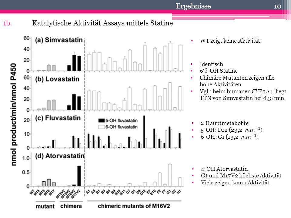 1b. Katalytische Aktivität Assays mittels Statine