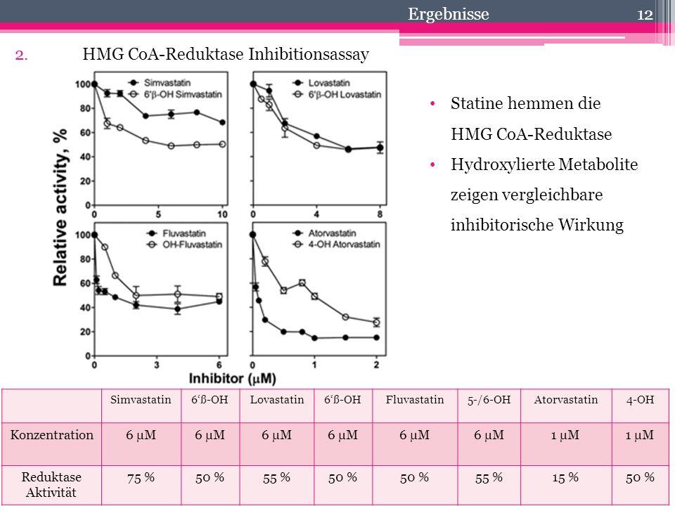 2. HMG CoA-Reduktase Inhibitionsassay