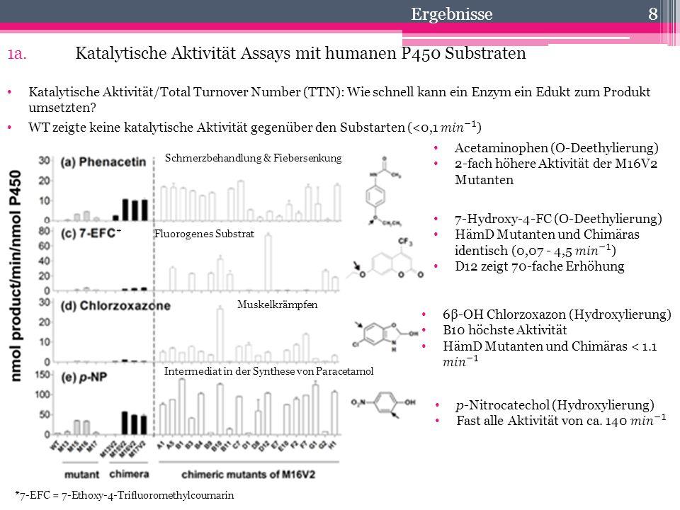 1a. Katalytische Aktivität Assays mit humanen P450 Substraten
