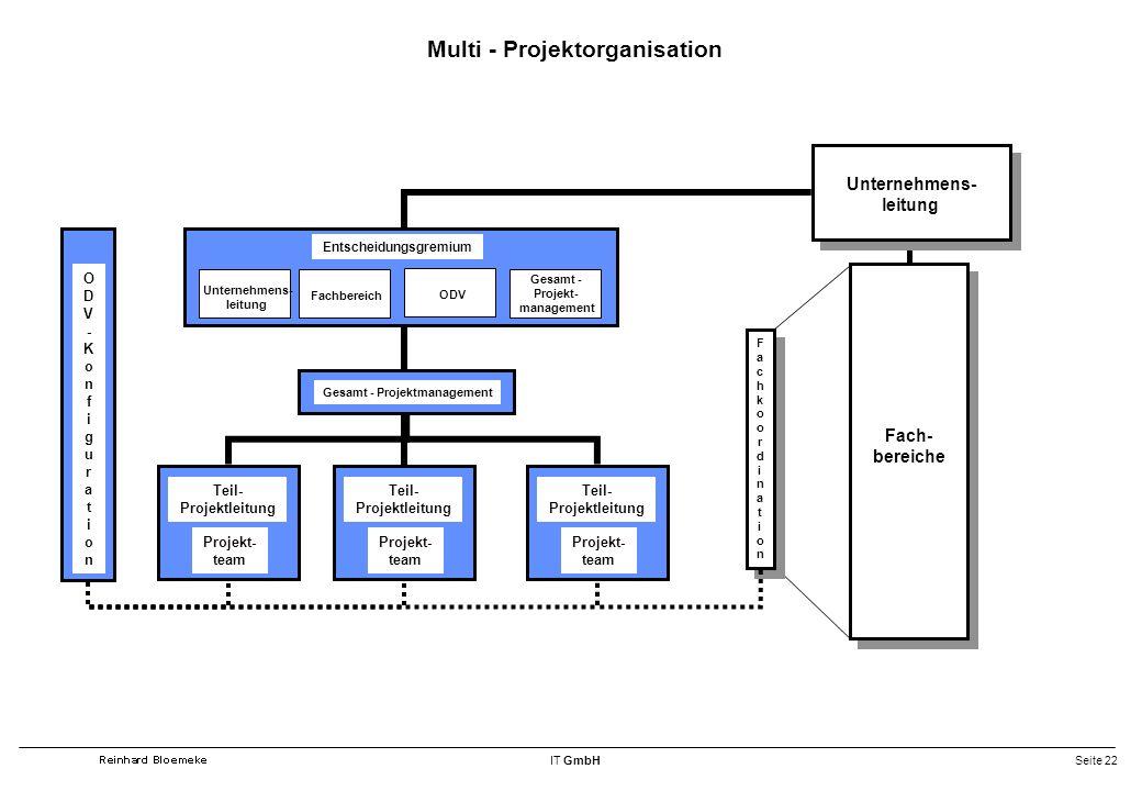 Multi - Projektorganisation