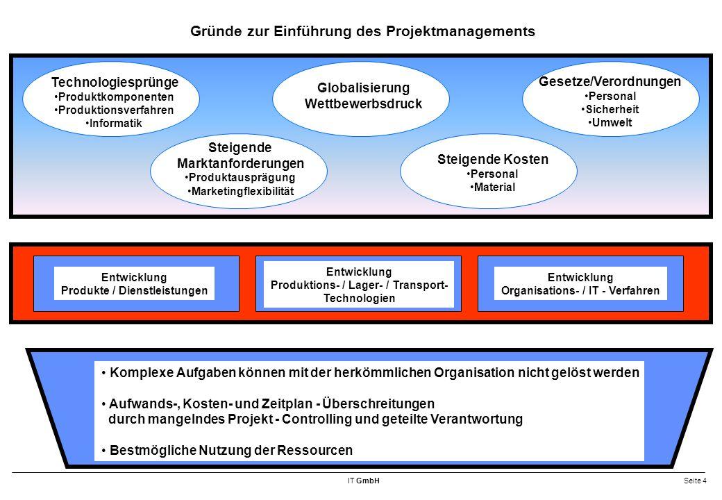 Gründe zur Einführung des Projektmanagements