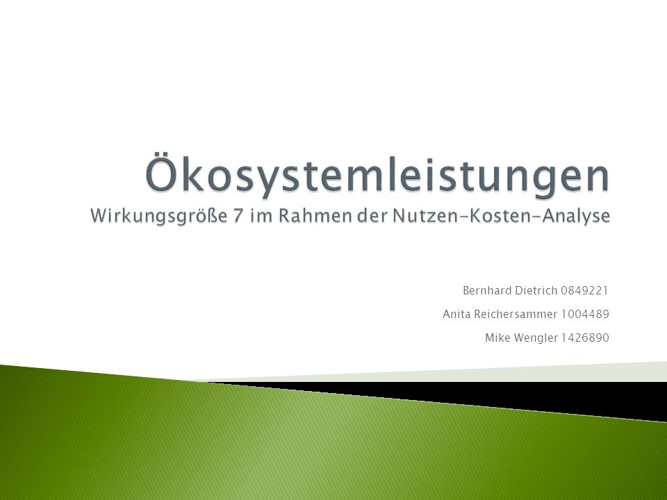 Ökosystemleistungen Wirkungsgröße 7 im Rahmen der Nutzen-Kosten-Analyse