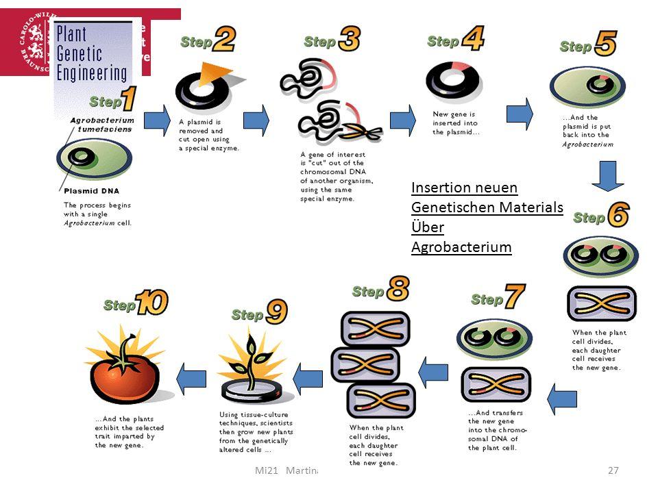 Genetischen Materials Über Agrobacterium