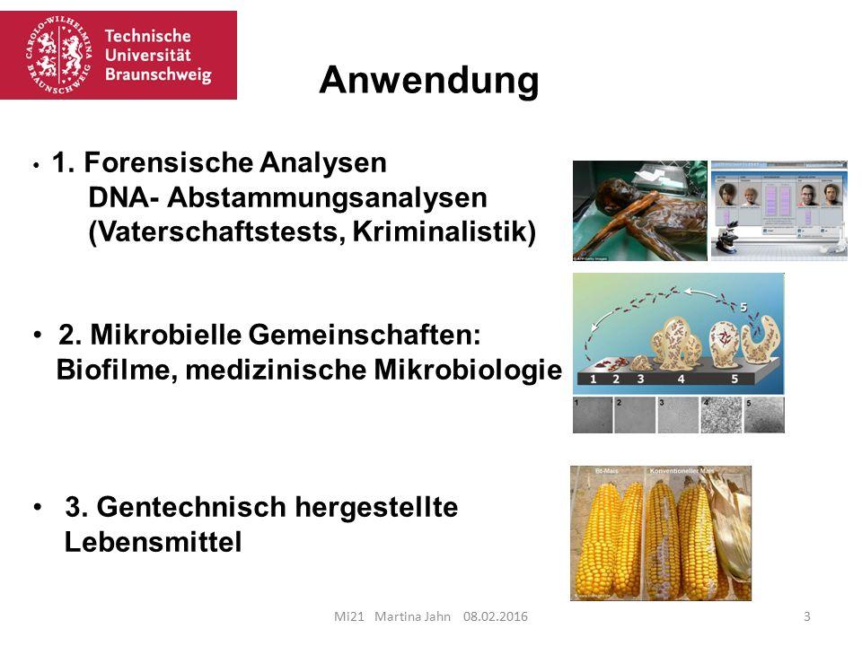 Anwendung Anwendung DNA- Abstammungsanalysen