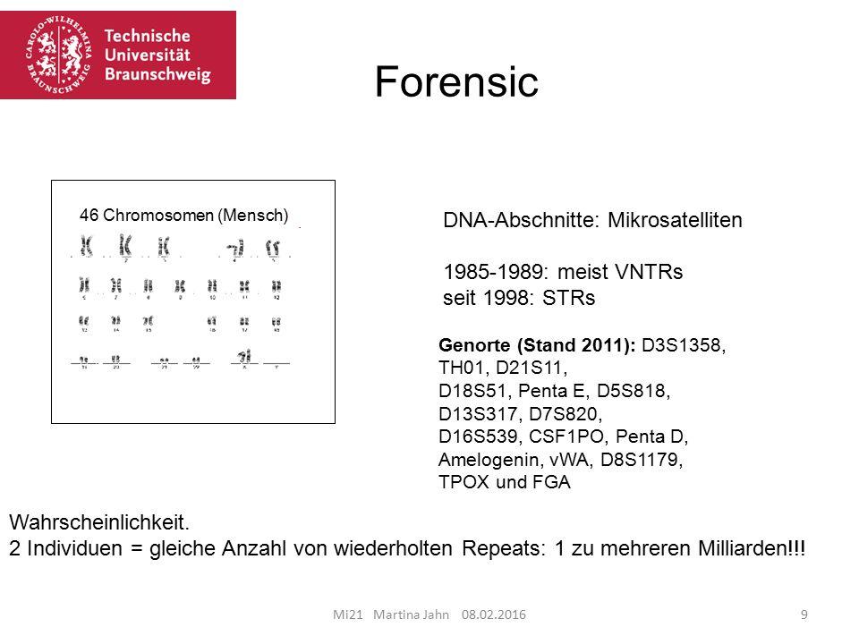 Forensic DNA-Abschnitte: Mikrosatelliten 1985-1989: meist VNTRs