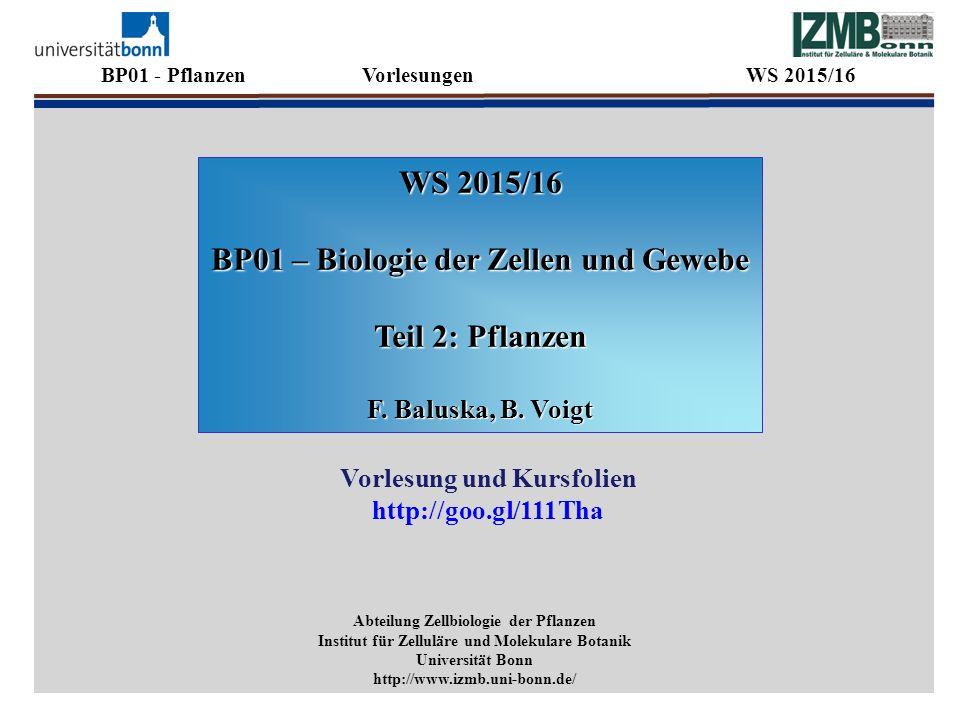 WS 2015/16 BP01 – Biologie der Zellen und Gewebe Teil 2: Pflanzen