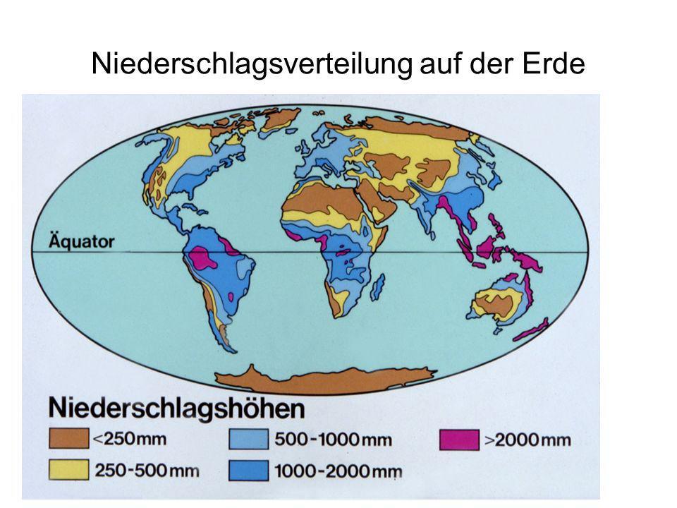 Niederschlagsverteilung auf der Erde