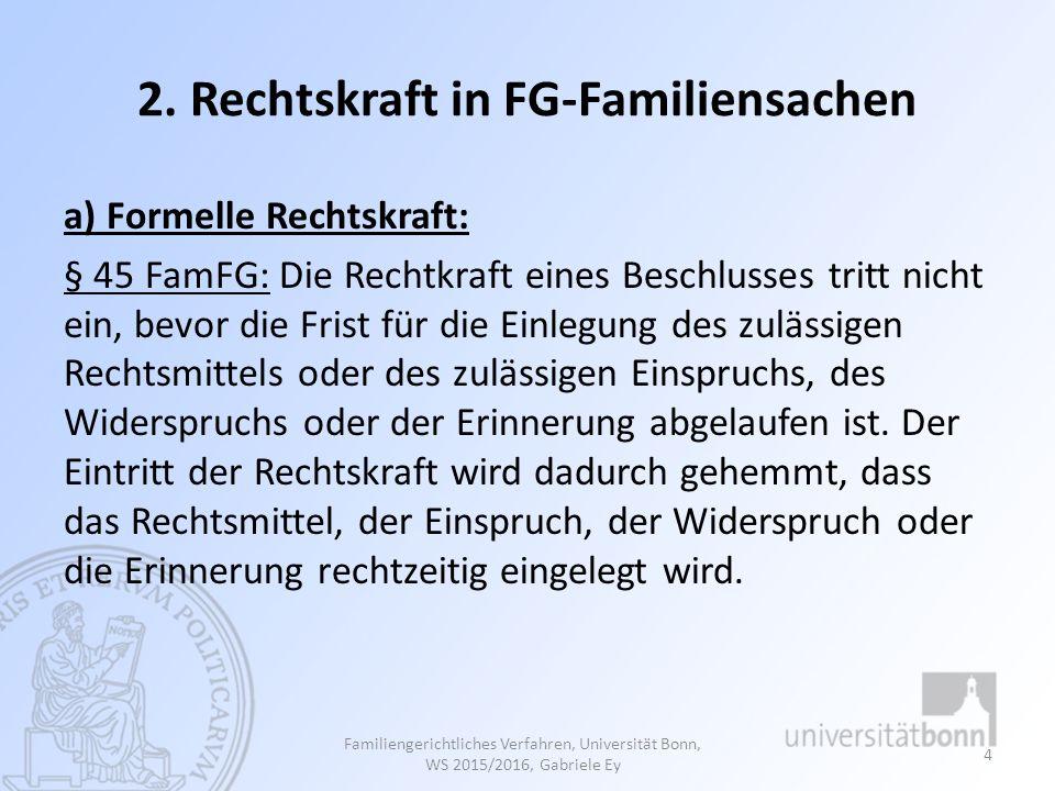 2. Rechtskraft in FG-Familiensachen