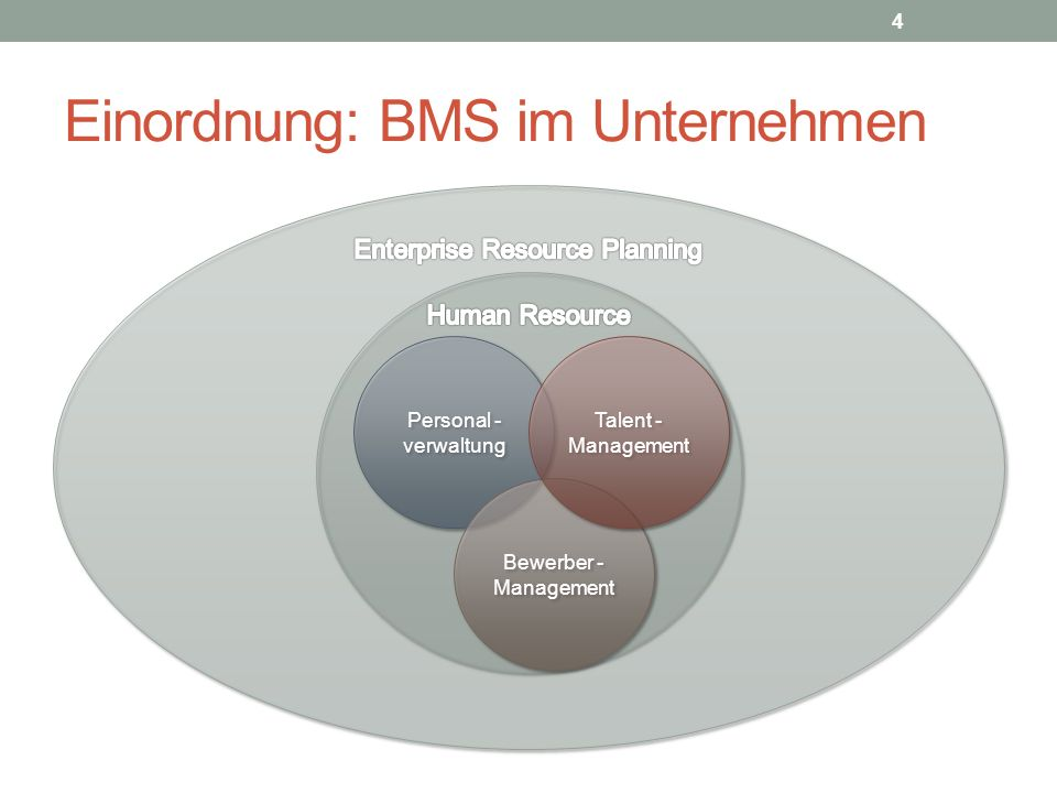 Einordnung: BMS im Unternehmen
