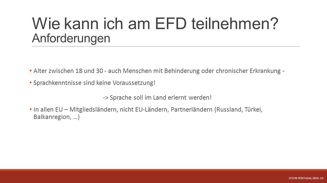Wie kann ich am EFD teilnehmen Anforderungen
