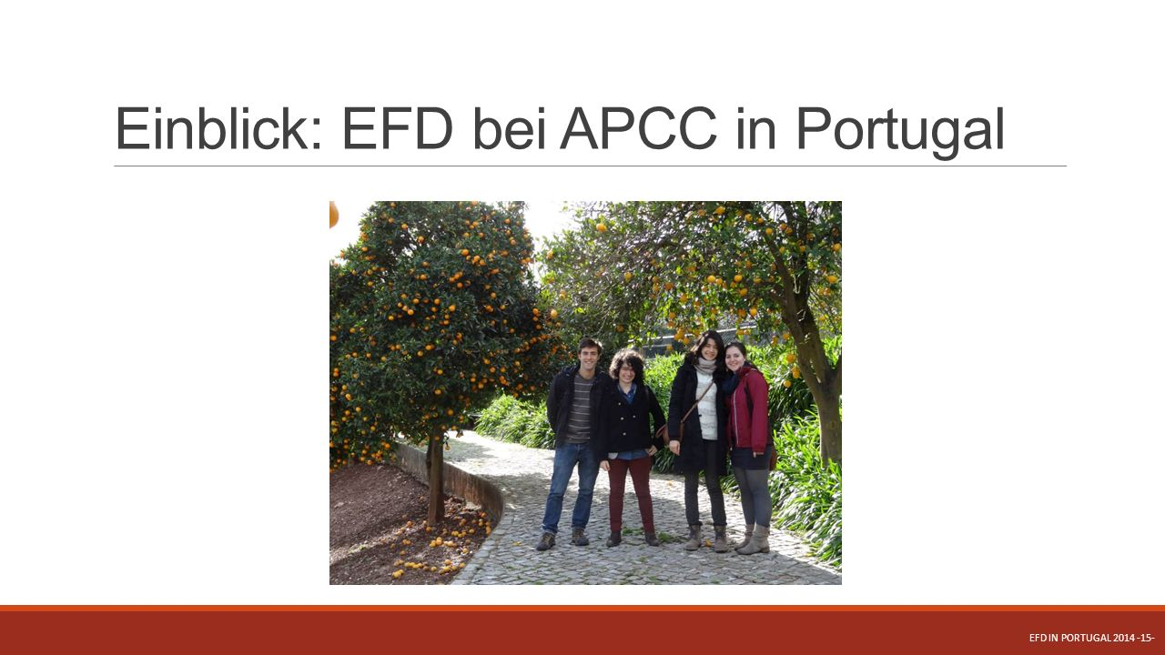 Einblick: EFD bei APCC in Portugal