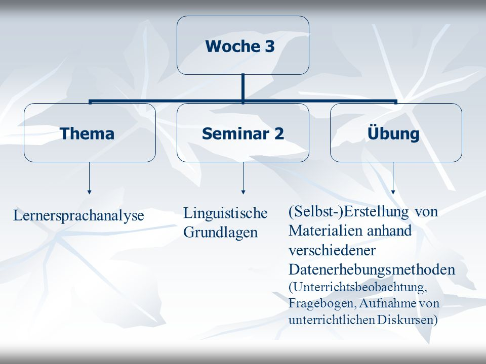 Lernersprachanalyse Linguistische Grundlagen.