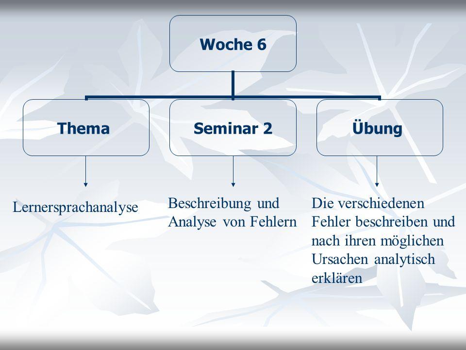 Beschreibung und Analyse von Fehlern