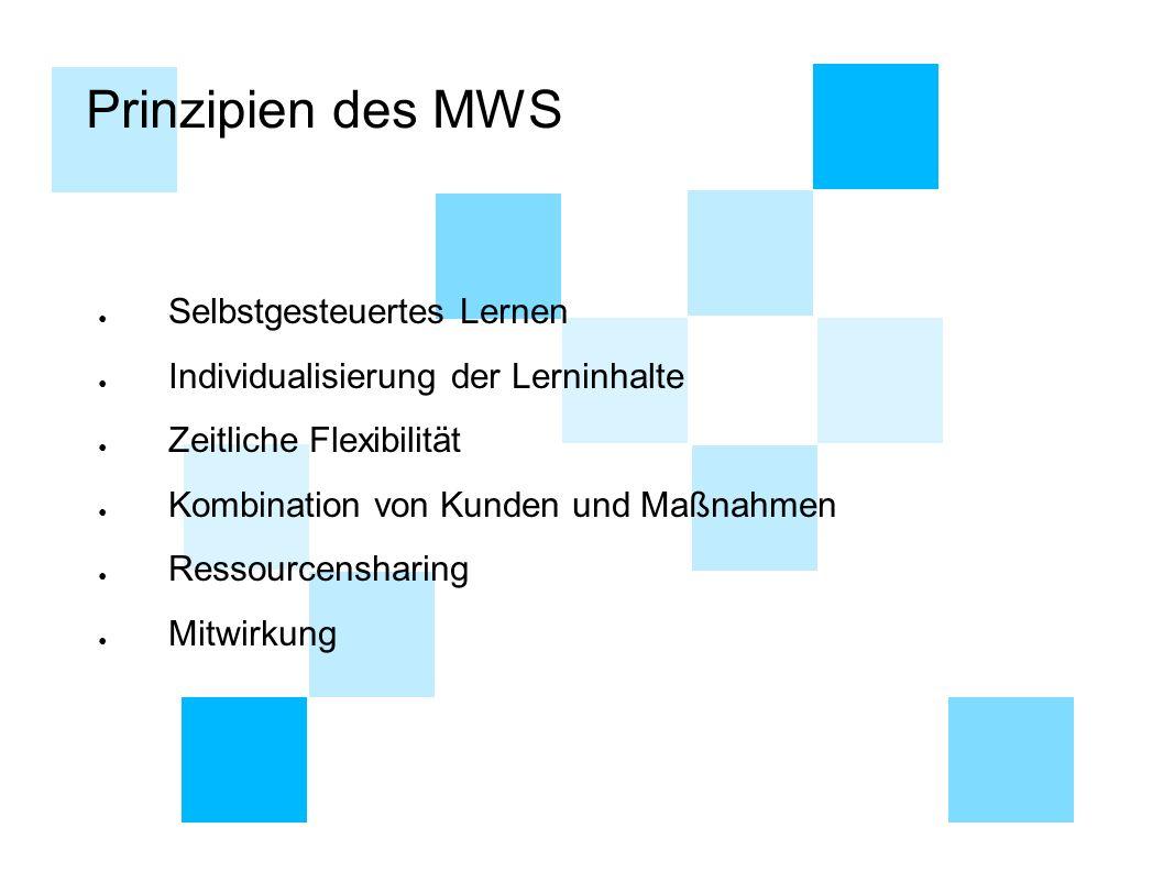 Prinzipien des MWS Selbstgesteuertes Lernen