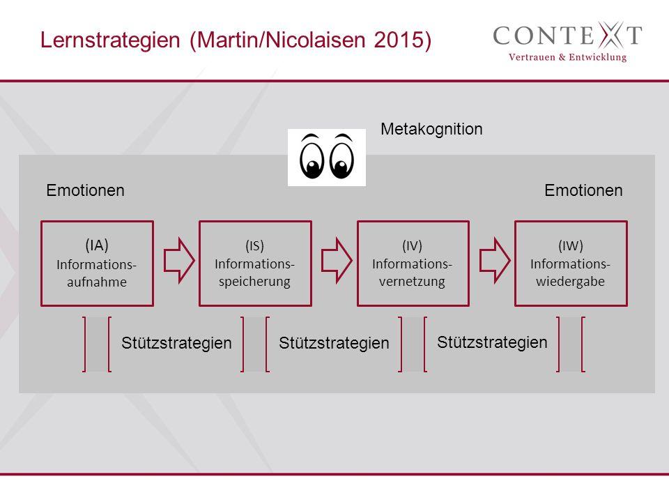 Lernstrategien (Martin/Nicolaisen 2015)