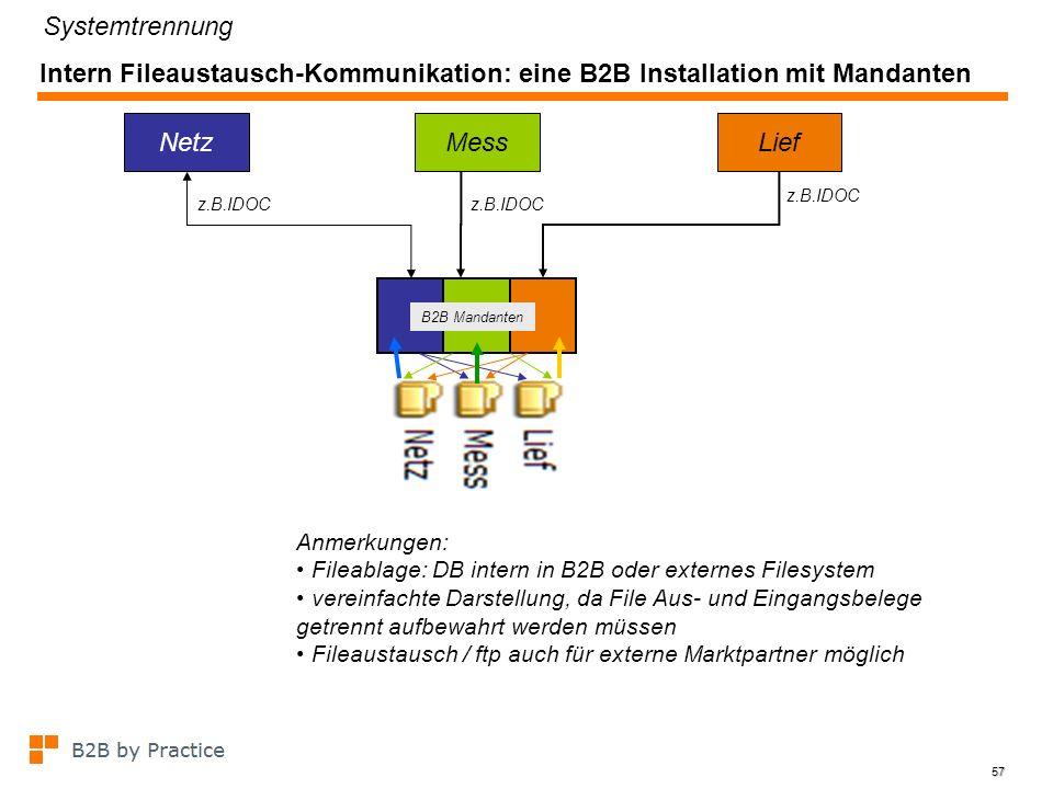 Systemtrennung Intern Fileaustausch-Kommunikation: eine B2B Installation mit Mandanten. Netz. Mess.
