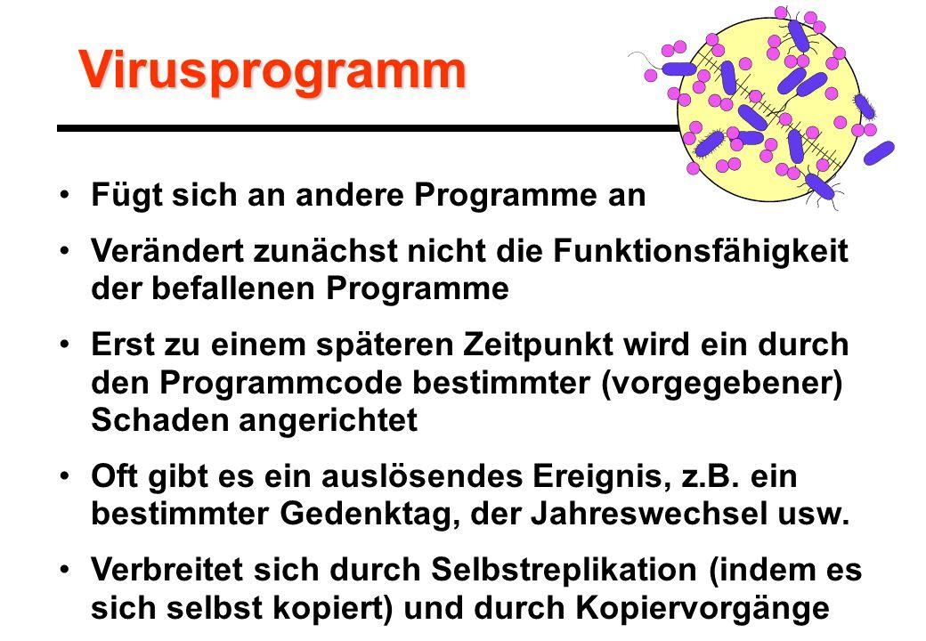Virusprogramm Fügt sich an andere Programme an