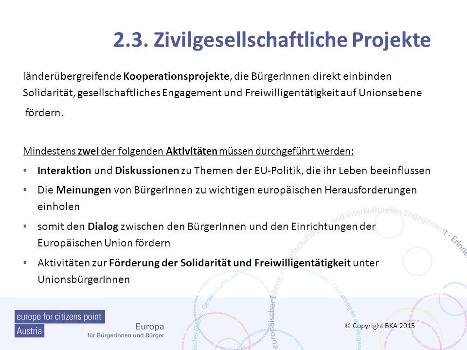 2.3. Zivilgesellschaftliche Projekte