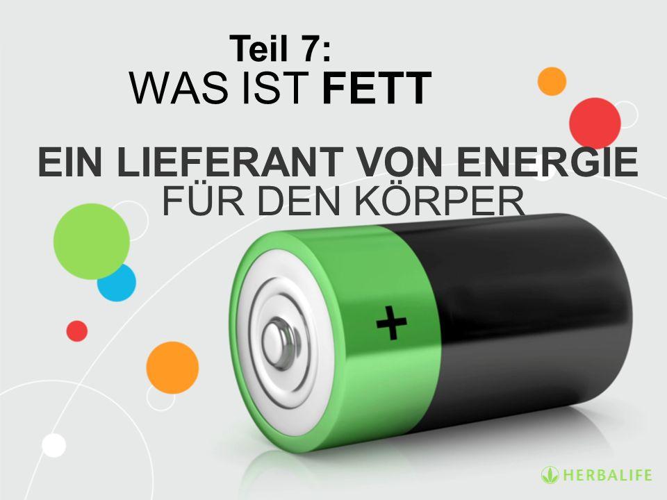 EIN LIEFERANT VON ENERGIE