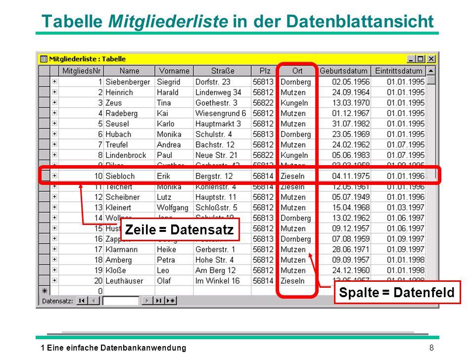 Tabelle Mitgliederliste in der Datenblattansicht