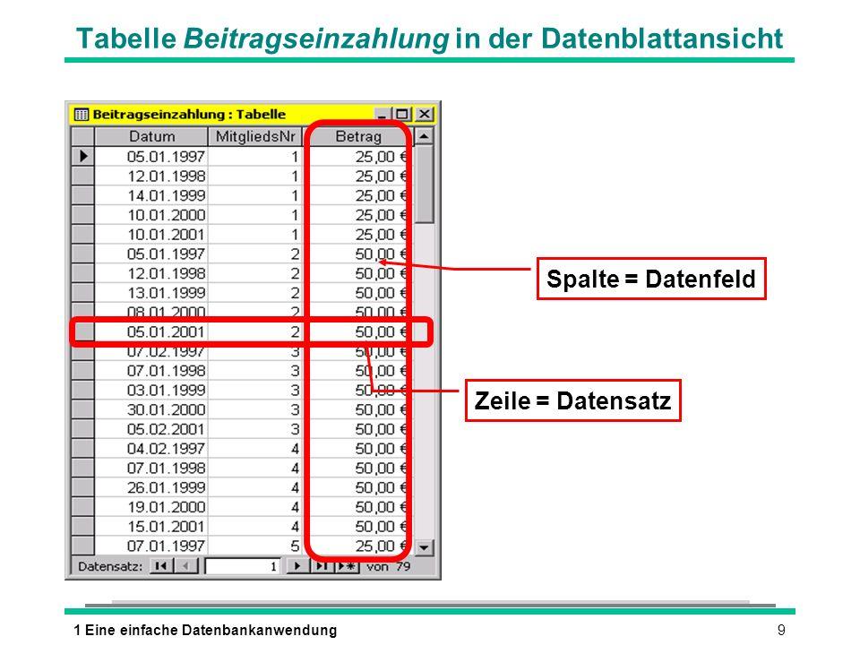 Tabelle Beitragseinzahlung in der Datenblattansicht