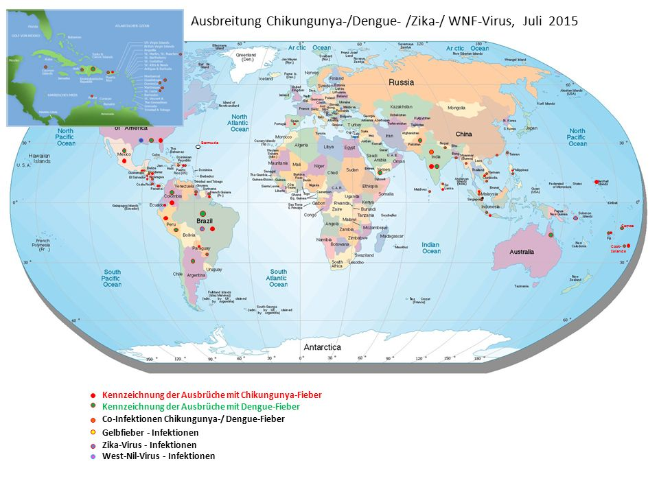 Ausbreitung Chikungunya-/Dengue- /Zika-/ WNF-Virus, Juli 2015